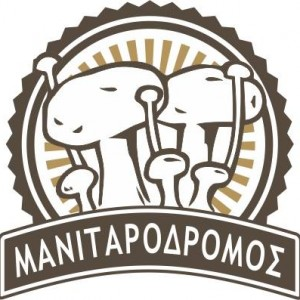 Manitarodromos